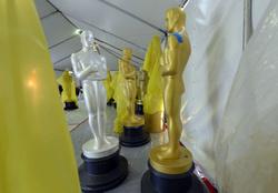 2015 Oscar Awards preparations